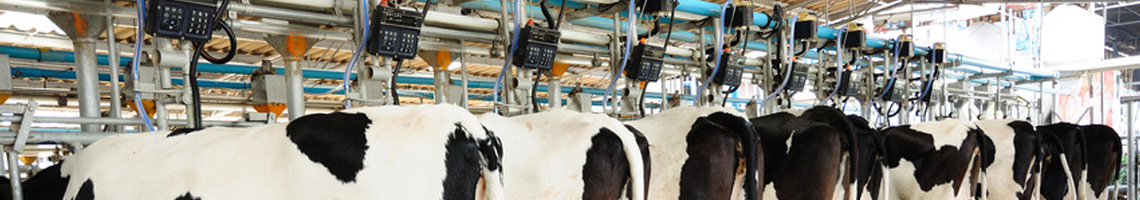 Electro-kingsey-services-electriques-agricoles